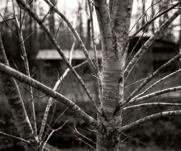 untitled shoot-0778-Edit