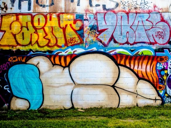 Asheville Graffiti SIG-204