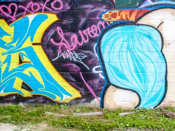 Asheville Graffiti SIG-218