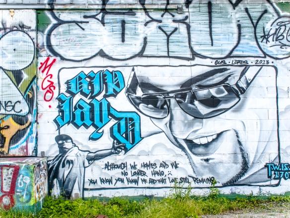 Asheville Graffiti SIG-222