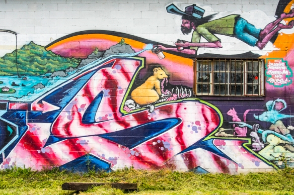 Asheville Graffiti with SIG-078
