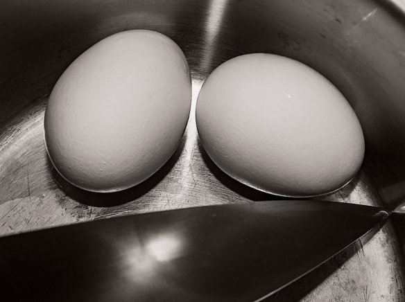 Eggs in BowlHomeAbstract100720155496-Edit