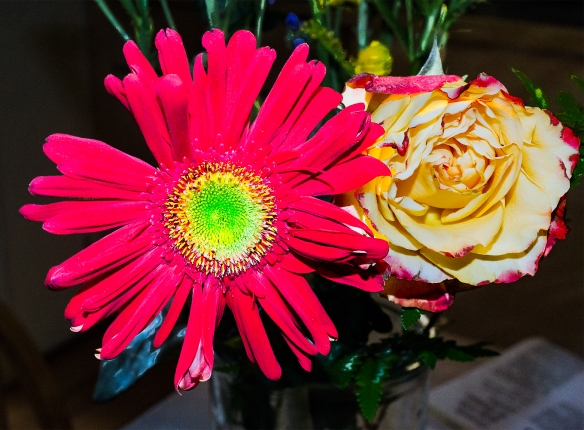 Homelitchenflowers04072017 (20) copy