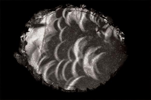 BArry Gilmerfarmeclipse2234