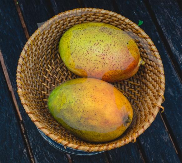 homeeggs and mango3308