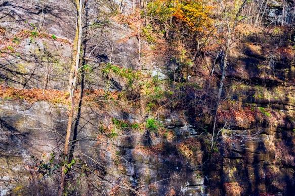 Al,triphighwaytrees and rocks (45)