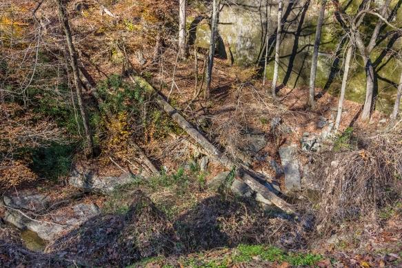 Al,triphighwaytrees and rocks (50)