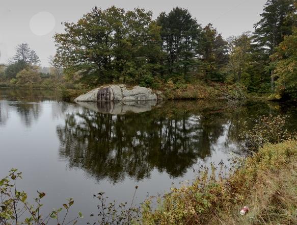 MaineTrip. AliceWeinbergsHeritage Farm,fog9211