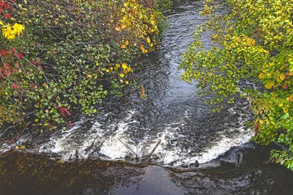 Firchville Stream