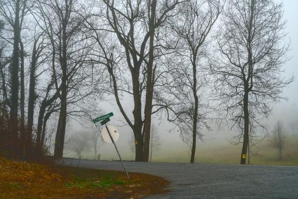 Trip, Al,, fogwoods_955
