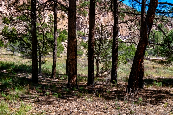 New MexicoBandelier National Monument10182018 (4)