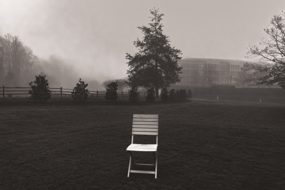 202001256379homebackyard fog