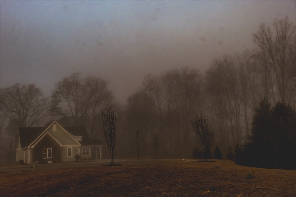 202001256389homebackyard fog