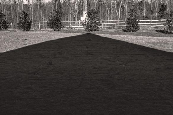 202001266432homeyard shadowscupsexperiment