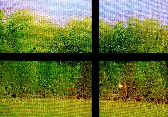 raindrops,screen_IMG9872