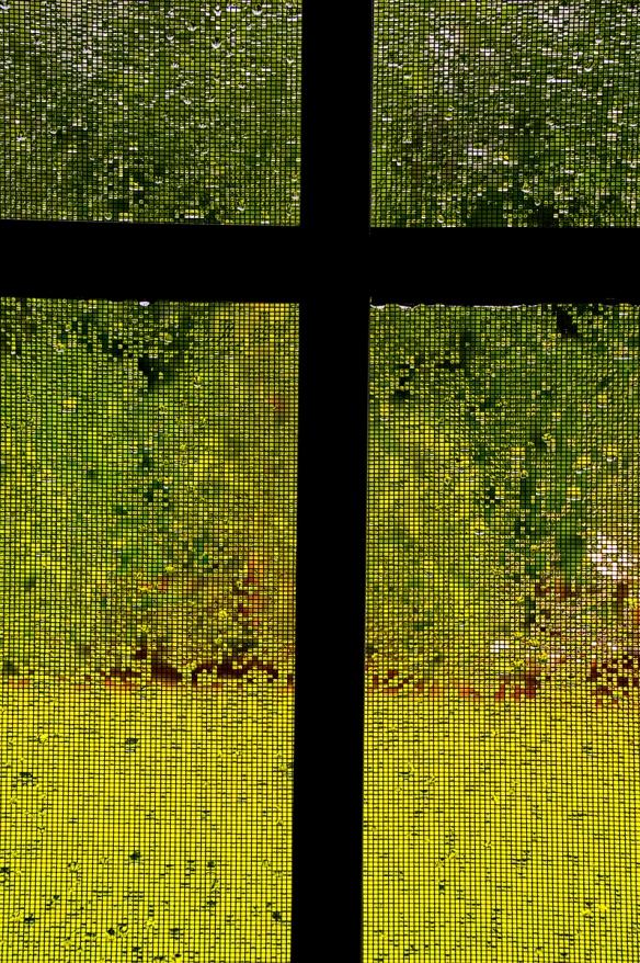rainsrops screens__IMG9862