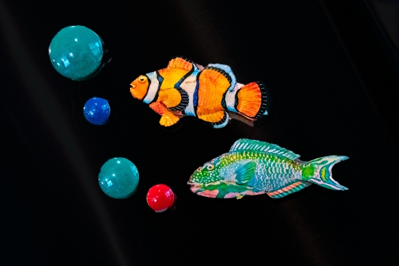 fishbubbles_IMG0844 copy.jpg